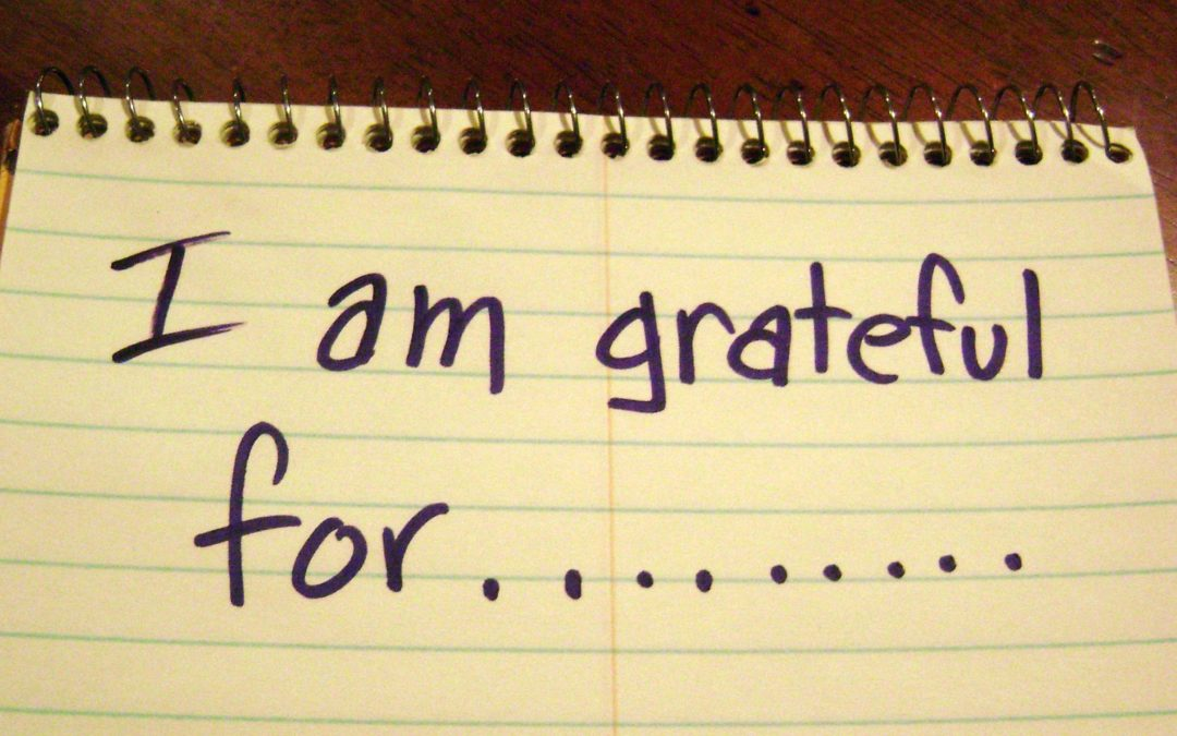 Every Day Gratitude…